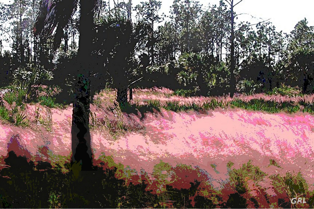 Red Fire Grass Field                                 Gulf Coast Florida, Detail - original                                 fine art work by G. Linsenmayer